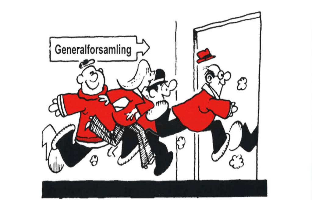 Generalforsamling
